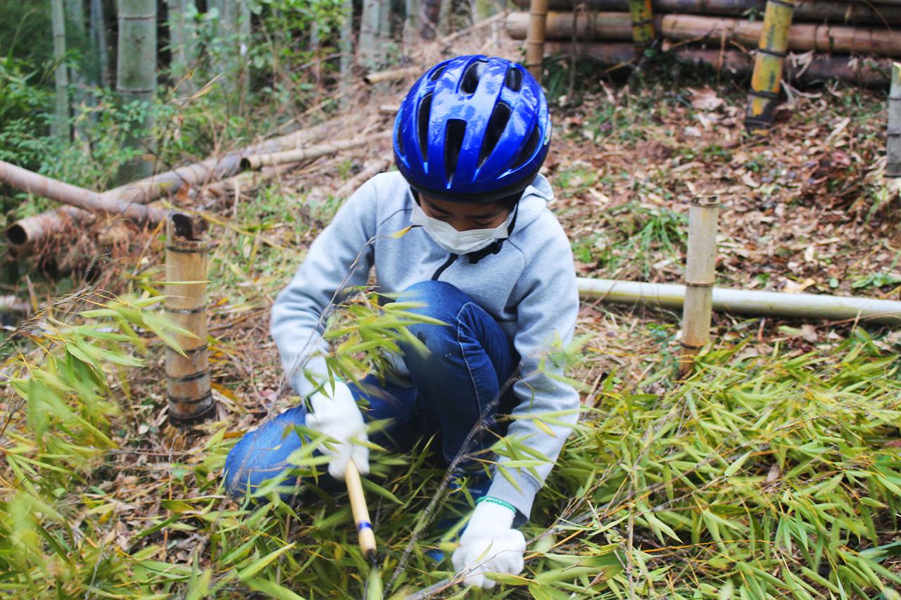 竜丘小6竹林整備