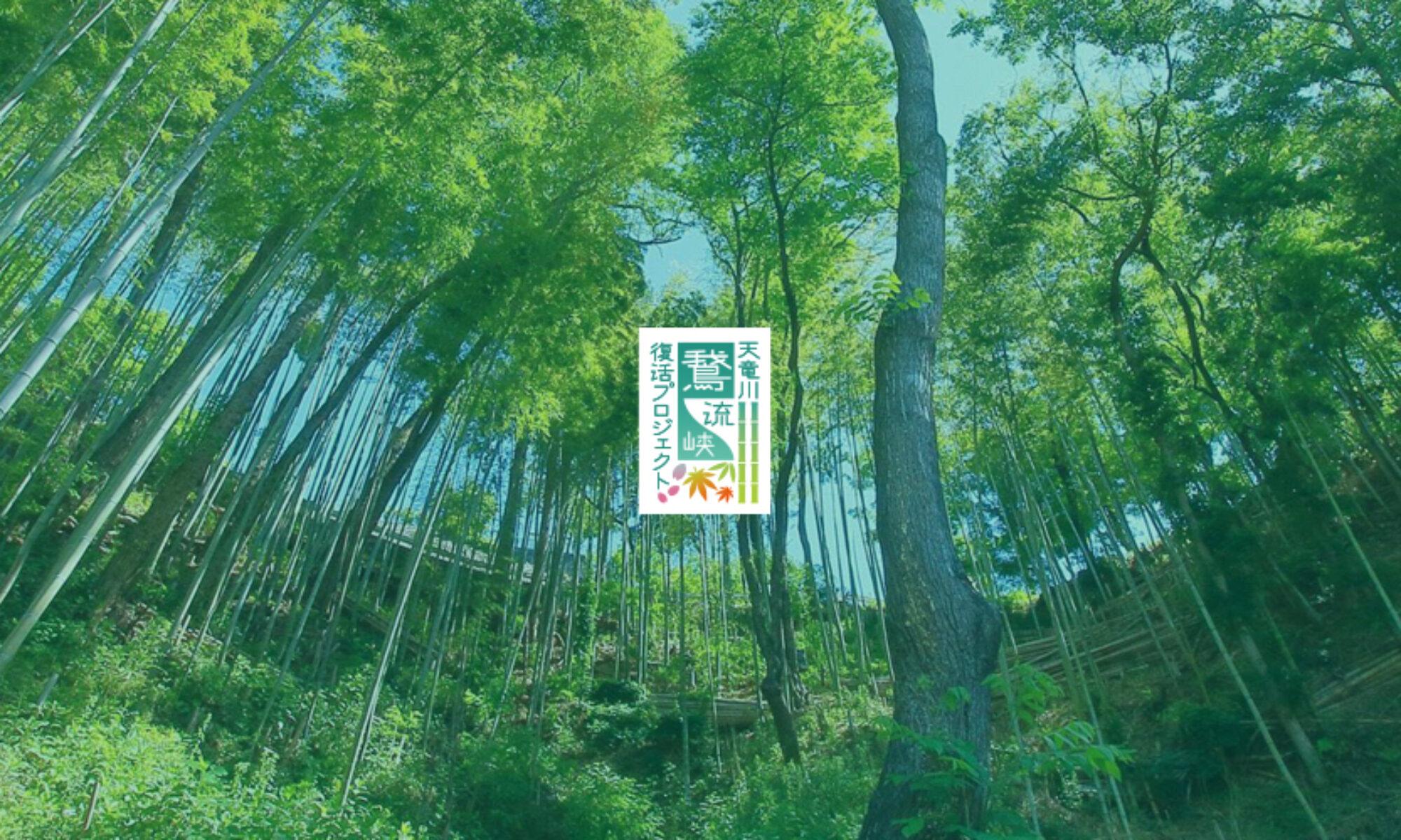 天竜川鵞流峡復活プロジェクト